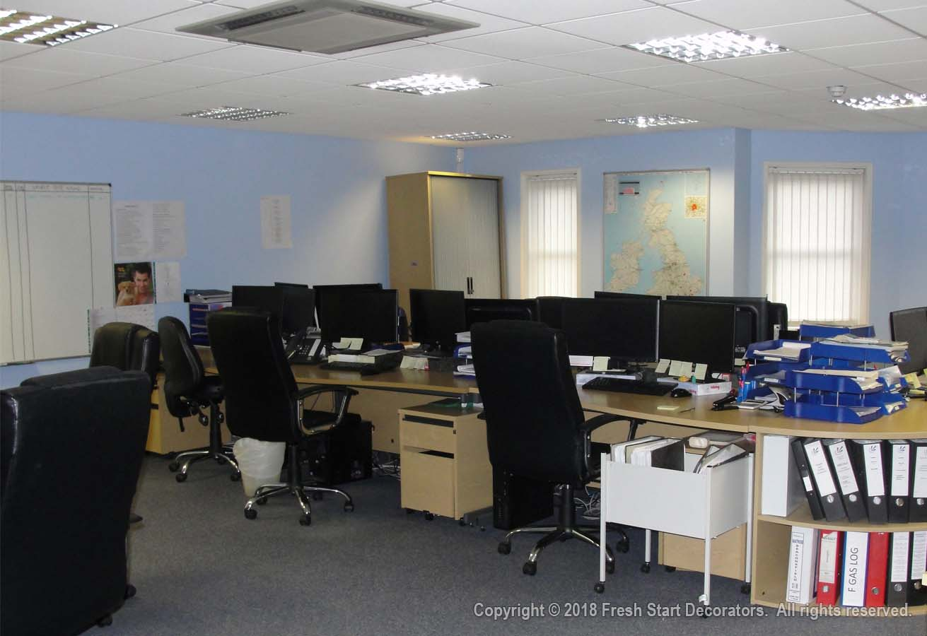 Residential and commercial painters decorate office